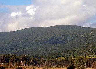 Brace Mountain - Mountain from southwest
