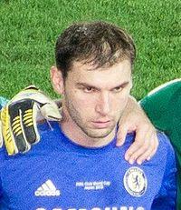 Branislav Ivanović (cropped).jpg