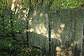 Briceni Jewish Cemetery 4.JPG