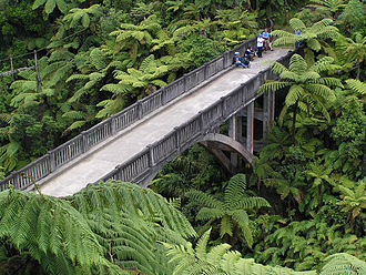 Bridge to Nowhere (New Zealand) - The Bridge to Nowhere from the access path