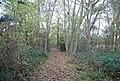 Bridleway through Tinley Lodge Toll - geograph.org.uk - 1576070.jpg