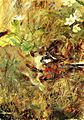 Bruno Liljefors - Weasel with Chaffinch.jpg