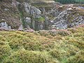 Bryn-mawr Quarry - geograph.org.uk - 219273.jpg