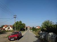 Brza, Leskovac, a10.JPG