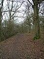 Buckie Braes - geograph.org.uk - 1002955.jpg