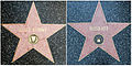 Bugs & Rugs Walk of Fame Stars.jpg