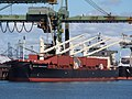Bulk Endurance (ship, 2016) IMO 9782003, Mississippihaven, Port of Rotterdam pic4.jpg