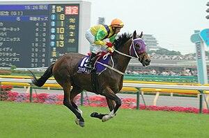 Bullish Luck at The 58th Yasuda Kinen(Jpn)