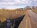 Burn and Bridge, B778 Road - geograph.org.uk - 1722080.jpg