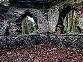 Bushy Park, Dublin -146441 (45565126185).jpg