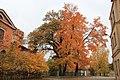 Cēsis,rudens. - panoramio (3).jpg
