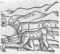 C. Lycosthenes, Prodigorum ac ostentororum chronicon... Wellcome L0030201.jpg
