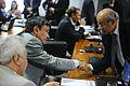 CAE - Comissão de Assuntos Econômicos (26163251332).jpg