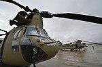 CH-47F Chinook PEO AVN DVIDS591776.jpg