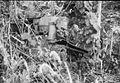 COLLECTIE TROPENMUSEUM Door de Amerikanen achtergelaten machine uit de Tweede Wereldoorlog TMnr 10029525.jpg