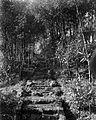 COLLECTIE TROPENMUSEUM Stenen Hindoetrap naar het Dijeng Plateau in Kedu Midden-Java TMnr 10007793.jpg
