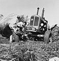 COLLECTIE TROPENMUSEUM Vrijwilliger Jos Westerbeek en cooperatieleden bezig met het uitgraven van een tractor TMnr 20014778.jpg