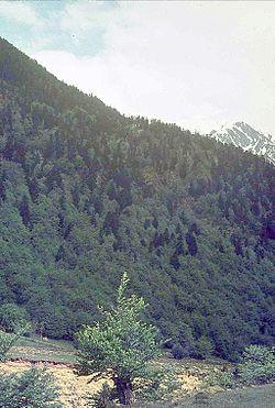 Pisos t rmicos wikipedia la enciclopedia libre for Pisos en montornes del valles