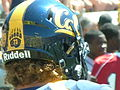 Cal football helmet side.JPG