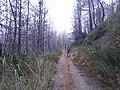Camino Primitivo, Embalse de Grandas de Salime 05.jpg