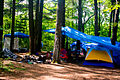 Camping tents in the woods 2.jpg