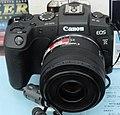 Canon EOS RP 27 Mar 2019a.jpg
