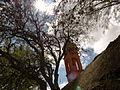 Capilla de los Juarez.JPG