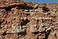 Caprock Canyons 2014 7.JPG