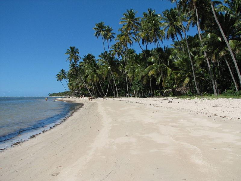 Praias para roteiro em Recife