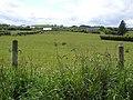 Carrowmore Townland - geograph.org.uk - 1349199.jpg