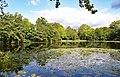 Cascade Pool Sandwell Valley (37016718096).jpg
