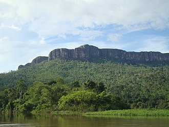 Guayanan Highlands moist forests - Cerro Maweti and Ocamo River