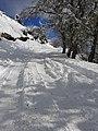 Cerro Otto nevado.jpg
