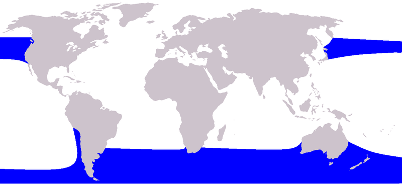 ფაილი:Cetacea range map Right Whale Dolphin.png