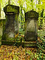 Chenstochov ------- Jewish Cemetery of Czestochowa ------- 37.JPG