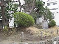 Chigasaki Ichiriduka -01.jpg