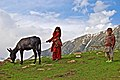 Children with donkey in Kaghan 8th July 2009.JPG