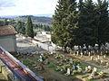 Cimitero di trespiano 04.JPG