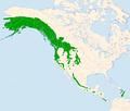 Cinclus mexicanus distr.png