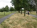 Clapham Common, paths - geograph.org.uk - 1401962.jpg