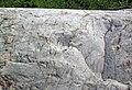 Clast-poor mixtite (Coleman Member, Gowganda Formation, Paleoproterozoic, ~2.3 Ga; Percival Lake roadcut, Ontario, Canada) 3 (47723385691).jpg