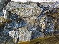 Clast-rich impact pseudotachylite (Sudbury Breccia, Paleoproterozoic, 1.85 Ga; Crab Lake South roadcut, south-southeast of Cartier, Ontario, Canada) 4 (32791640867).jpg
