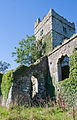 Clonmines Friary Tower SE 2010 09 27.jpg