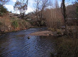 Cobungra River - Image: Cobungra River at Anglers Rest, Vic, jjron, 6.06.2009
