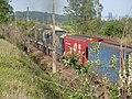 Comboio que saía sentido Guaianã do pátio da Estação Ferroviária de Salto - Variante Boa Vista-Guaianã km 210 - panoramio (4).jpg