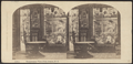 Conservatory view, Fifth Avenue, N.Y, from Robert N. Dennis collection of stereoscopic views.png