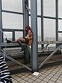 Cosplayer at 15th CICAF (Steins;Gate).jpg
