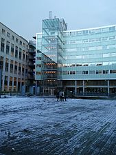 Cour dauphine-premiere neige 2010.jpg
