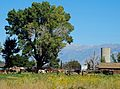 Cow Hide Ranch, Big Pine, CA 9-2016 (30027513025).jpg
