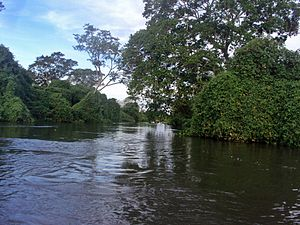 English: The Cuiabá River, passing through the...